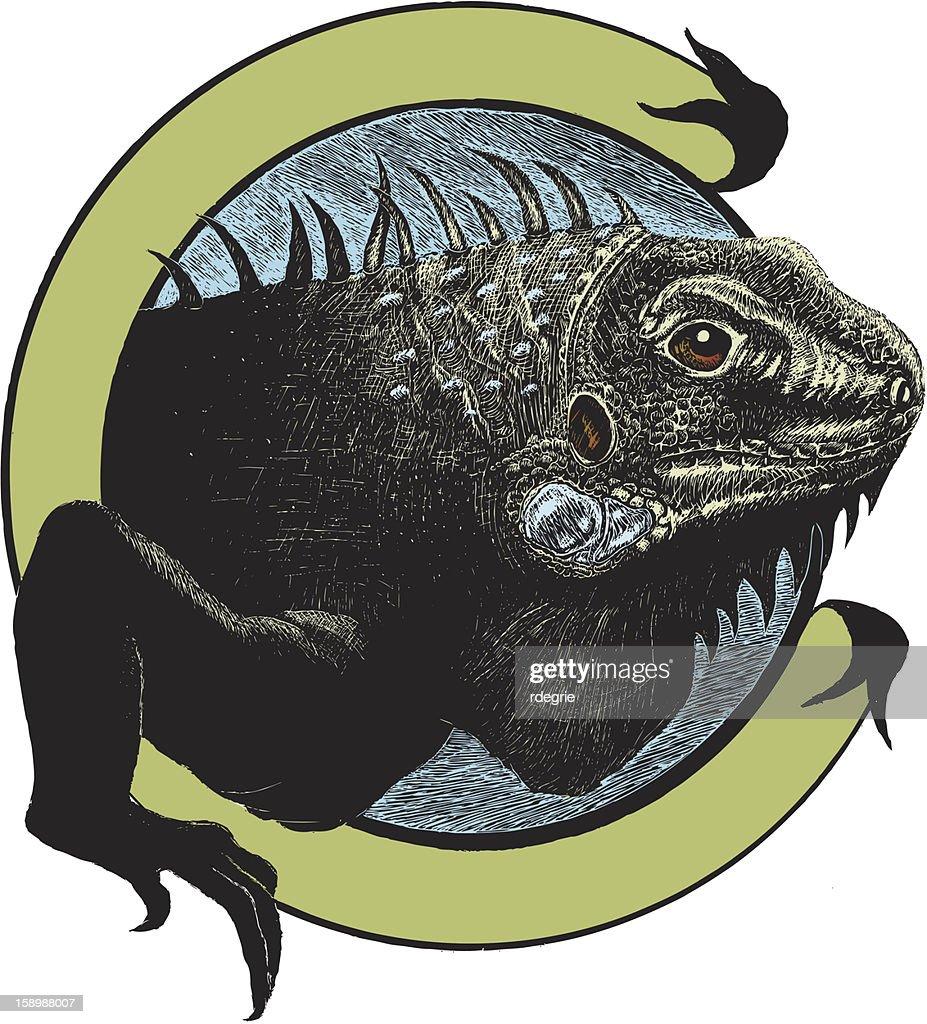 Iguana Illustration : Arte vettoriale