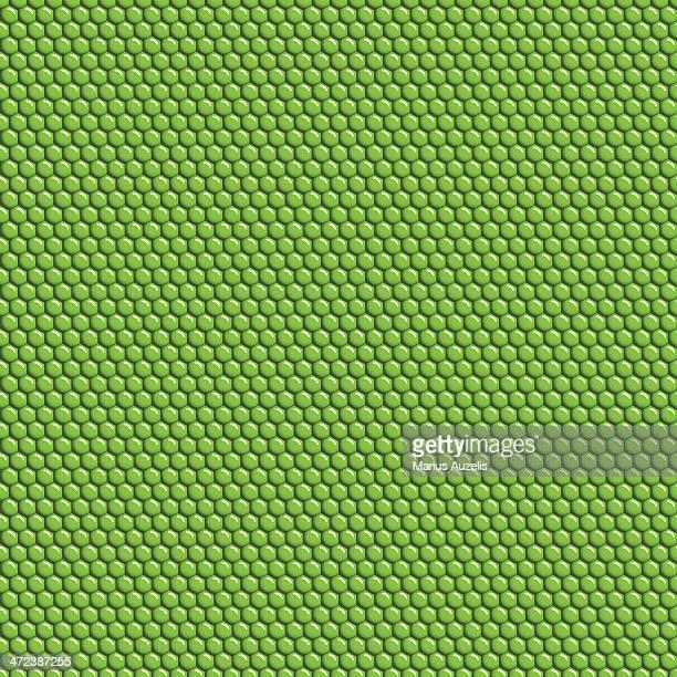 Iguana skin seamless pattern