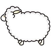 Illustration of a cute sheep.
