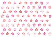 Illustration of cherry blossoms