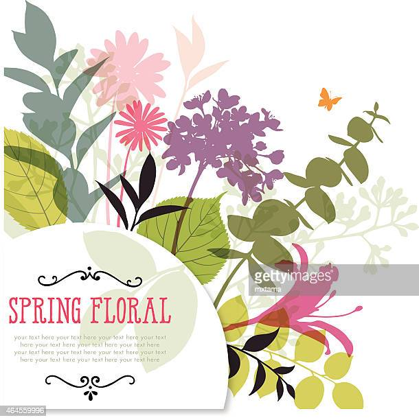 Illustration der bunten Frühling Blumen und Beine mit Rahmen und Copyspace
