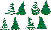 Cartoon conifer trees with and without snow.