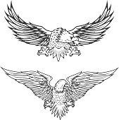 Illustration of flying eagle isolated on white background. Vector illustration.Illustration of flying eagle isolated on white background. Vector illustration.
