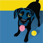 Illustration of a happy playful Black Labrador Retriever. Space for text. For posters, cards, banners.