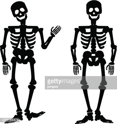 illustration of the silhouette of a human skeleton vector art, Skeleton