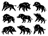 Illustration of the silhouette of a wild boar. Vector set of black figures on a white background.