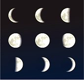 Moon phases vector illustration