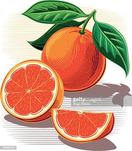 Illustrations of whole and sliced oranges