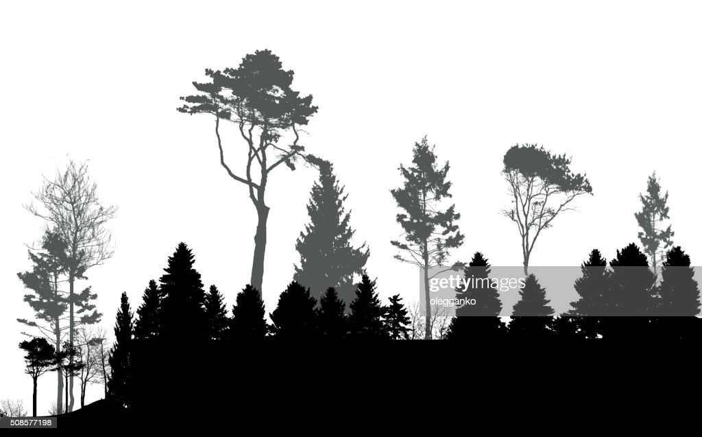 Image of Nature. Tree Silhouette. Eco banner. Vector Illustratio : Vectorkunst