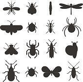 Insect icons black silhouette flat set isolated on white background. Insects flat icons vector illustration. Nature flying insects isolated icons. Ladybird, butterfly, beetle vector ant. Vector insect