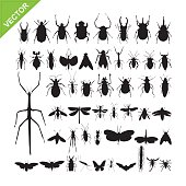 Insect silhouettes vector