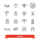 Insects and pest extermination thin line art icons set. Linear style symbols isolated on white.