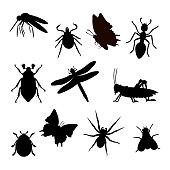 Insekt Silhouette schwarz isoliert weißer Hintergrund