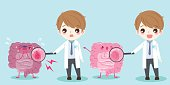 cute cartoon doctor and intestine with health concept