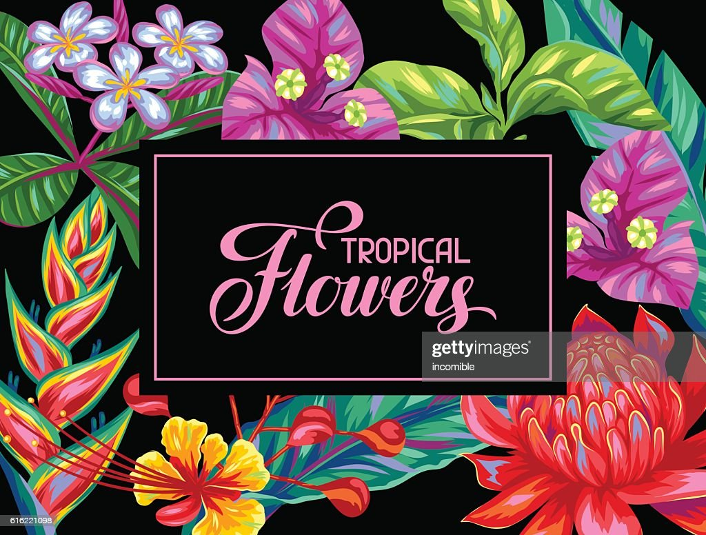 Invitation card with Thailand flowers. Tropical multicolor plants, leaves and : Vektorgrafik