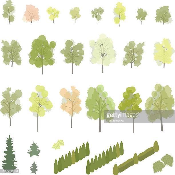 Isométrique des arbres et des buissons