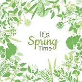 Its spring time green card design text in floral frame, vector illustration. Lettering design element