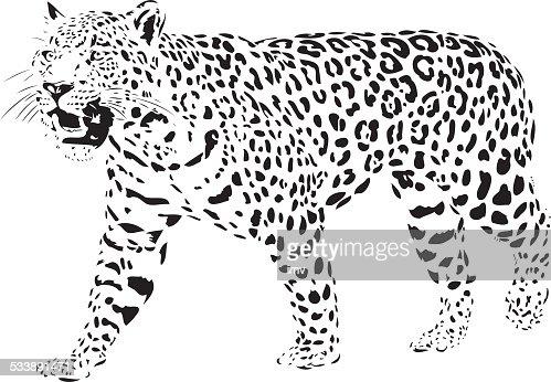 jaguar face illustration - photo #26