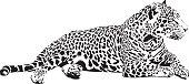 Black and white vector sketch of lying Jaguar