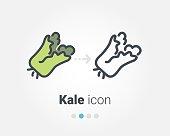 Kale vector icon