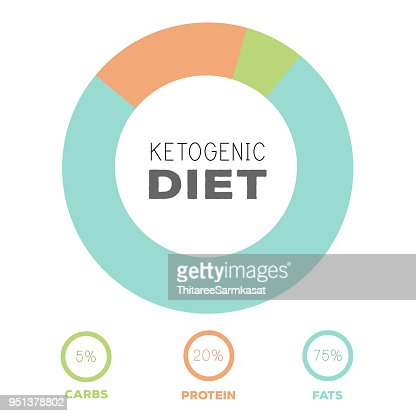 ketogenic diet macros diagram, low carbs, high healthy fat : stock vector