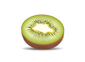 Kiwi fruit cut in half slices. High quality natural eco organic ecological fruit for juice, yogurt, pudding, shake, cream, sour milk packaging. Realistic detailed vector. Isolated on white background