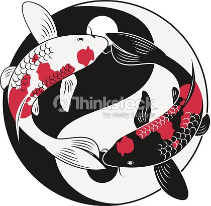 Koi fish vector art thinkstock for Koi fish vector