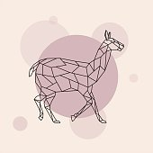 Lama side view. Geometric style. Vector illustration.