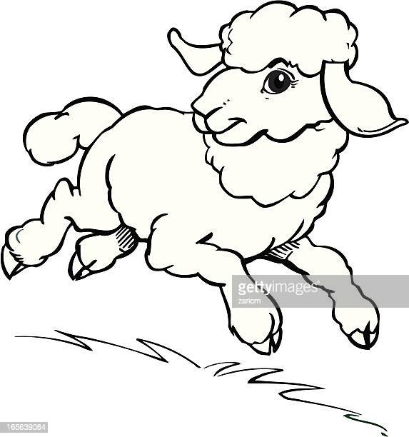 lamb vector art and graphics
