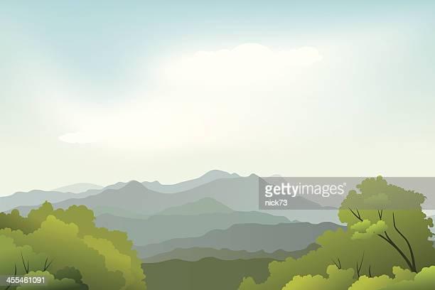 Paysage de la beauté de la nature en arrière-plan