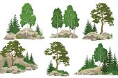 Set Landscapes, Coniferous and Deciduous Trees, Pine, Fir Tree, Birch, Flowers and Grass on the Rocks, Isolated on White Background. Vector