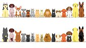 large and small dogs and cats banner set, front view and rear view.
