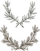 Vector drawing triumphal branches of laurel and oak.