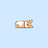 Lazy dog sleeping, cute welsh corgi puppy lying on back cartoon icon, vector illustration