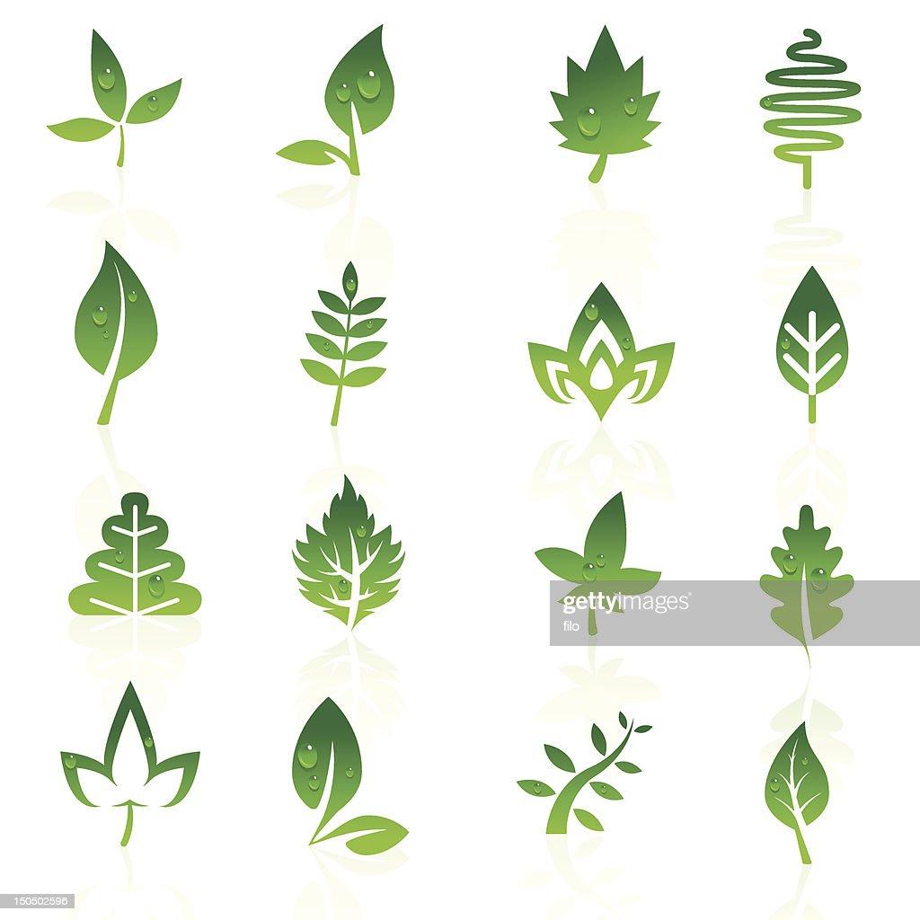 Leaf Elements : Vector Art