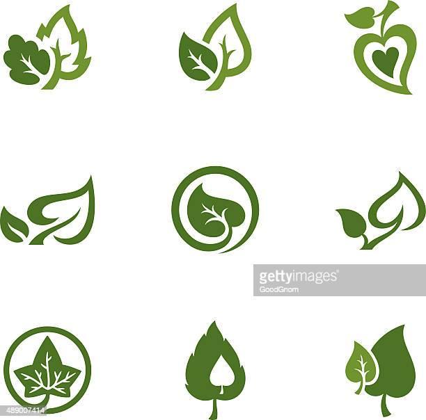Ensemble d'icônes de feuilles