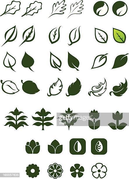 Leaf Logos Vector Set 2
