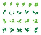 Leaves icon vector set isolated on white background. Ecology icon set.