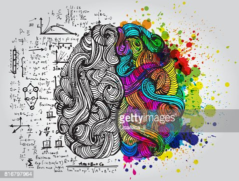 Left and right human brain. Creative half and logic half of human mind. Vector illustration. : Arte vetorial
