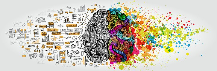 Left Right Human Brain Concept Creative Part And Logic With Social Business Doodle