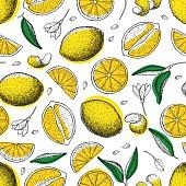 Lemon vector seamless pattern. Drawing lemon colorful background. Tropical summer citrus fruit engraved style background. Detailed food drawing. Great for summer decor or detox program
