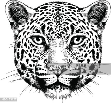 panther burn hindu singles Jim suhler 39 fans top tracks 08 sky's full of crows  jim suhler panther burn 04:47 10 dinosaur wine  jim suhler  singles 21-10-2016 .