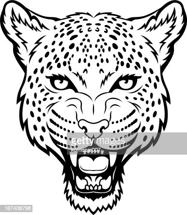Leopard : Vector Art