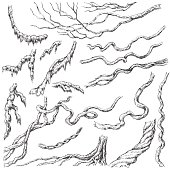 Hand drawn branches and leaves of tropical plants. Liana and moss-covered twigs sketch.