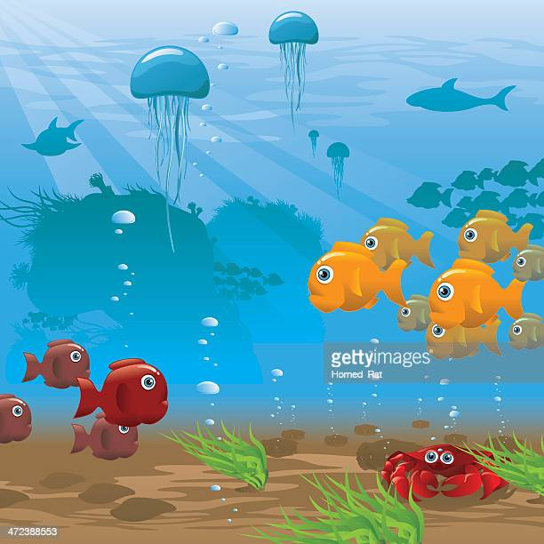 Ocean Floor Stock Illustrations And Cartoons Getty Images