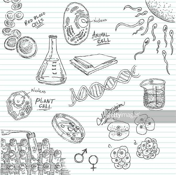 Science Vial Drawing Stock Illustrations And Cartoons