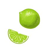 Lime slice and whole. Isolated on white background. Vector color flat illustration.