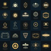Vector illustration of Line graphics monogram. Vintage Logos Design Templates Set. Business sign Letter emblem. Vector  elements idea, Icons Symbols, Retro Labels, Badges, Silhouettes. Collection 25 I