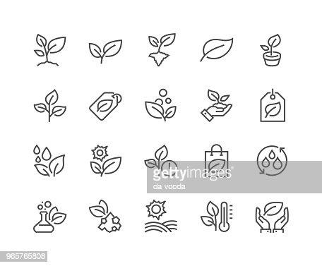 Line Plants Icons : stock vector