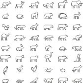Line set of silhouettes of australian, african, american and other animals. Vector icon monkey, beaver, pig, kiwi, cow, chicken and others. Open path